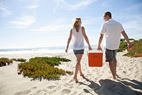 Portrait of young couple carrying portable fridge