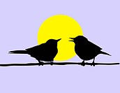vector drawing two birds sitting on branch on background sun