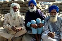India, Punjab, sikhs.