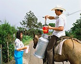 Spanish milkman on a donkey