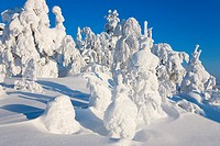 Winter landscape. Scandinavia