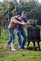 Croatia, Aljmas, Young man and woman making wine in vineyard