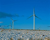 Low angle view of wind turbines, Scotland