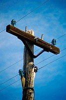 Low angle view of wires on a telephone pole