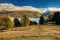 Cyclists near Braemar station barn, landscape of Lake Pukaki and Ben Ohau Range, Mackenzie country, Canterbury, New Zealand