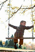 Rear view of boy on swing