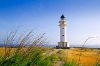 Barbaria berberia cape Formentera lighthouse golden meadow blue sky