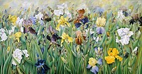 The Irises of Guemappe 1993 Heliette Wzgarda b.1943/French Oil The Grand Design, Leeds, England