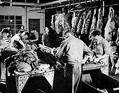 Butchers working in a slaughterhouse, Ireland