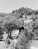 USA, Vermont, Waitt´s River, village scene with calves and road