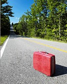 Red Suitcase on a Road