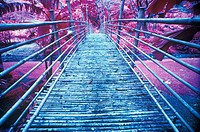 Bamboo Foot Bridge