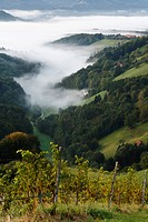 Austria, Styria, View of mountain in fog