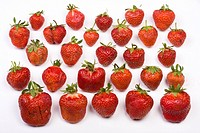 a lot of strawberries on white background