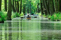 FlussŸpaddler , Spree Forest,