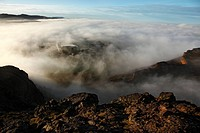 Scotland, City of Edinburgh, Edinburgh. View from Arthur's Seat of morning fog over the City of Edinburgh