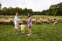 Family and flock of sheep in meadow, Munich, Bavaria, Germany