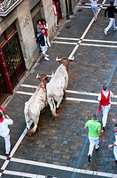 Runnng of the bulls, San Ferm&#237;n street-partying, Pamplona, Navarra Navarre, Spain, Europe