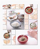 Collage of different Japanese rice dishes