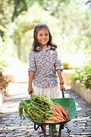 Cute girl pushing a wheelbarrow filled with carrots (thumbnail)
