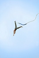A man on a bungee jump, UK 2005.