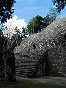 Low angle view of the old ruins, Mayan ruins, Calakmul, Campeche, Mexico