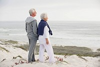 Side profile of a senior couple looking at the sea (thumbnail)