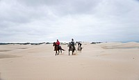 Horseback riding along secluded beaches and sand dunes, Jeffreys Bay, South Africa