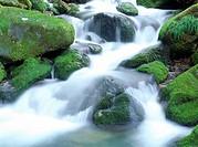 Shiraito Waterfall, Shizuoka Prefecture, Honshu, Japan