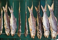 China, Macau, Coloane Island, Coloane Village, drying fish
