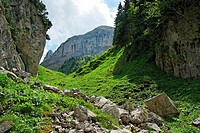 mountain track to lake falensee or fahlensee - alpstein mountain range - canton of appenzell-innerrhoden - switzerland