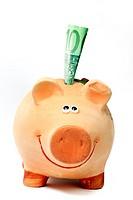 Sparschwein mit 100 Euro_Geldschein Piggy Bank with 100 euro notes