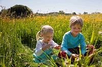 Children sitting in field of flowers