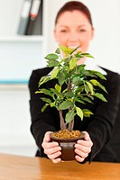 Young businesswoman holding a plant in her office