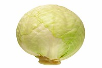 White cabbage isolated on white background, DFF image, Adobe RGB