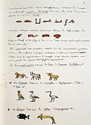 Egyptian civilization - Jean Francois Champollion (1790-1832), Egyptian Grammar, 1841. Chapter I, plate, folio 8.
