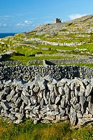 O'Brien's Castle  Inisheer Island - Inis Oirr  Aran Islands, Galway County, West Ireland, Europe