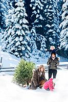 Austria, Salzburg Country, Flachau, View of family with christmas tree and sledge playing in snow
