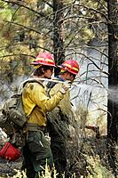 Wildland fire fighters