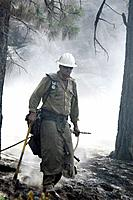 Wildland fire fighter, smoky fir