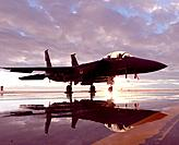 An F-15E Strike Eagle sits on the flightline during sunset Dec  6, 2010, at Mountain Home Air Force Base, Idaho