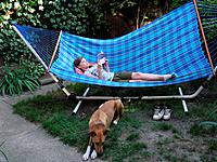 Canada, Ontario, Windsor. A nine year girl on hammock reading when a dog approaches