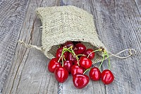 fresh red cherries in a jute sack