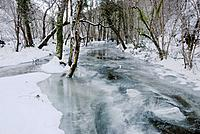 The frozen River Wyre in woodland near Llanrhystud, Wales in snow and freezing winter weather, Winter