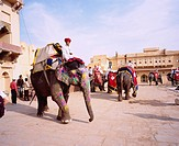 Elephant Taxi, Humbert castle, Jaipur, India, Asia