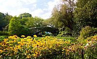 Central park, NYC, New York, USA