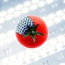 GM tomato. Conceptual image of a tomato with an added grey characteristic, with a DNA deoxyribonucleic acid autoradiogram in the background. This imag...