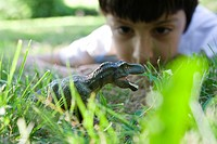 Boy playing with toy dinosaur in the grass