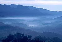 Morning fog. Yamato_machi, Kumamoto Prefecture, Japan
