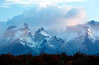Sunrise view of snow covered Los Cuernos, and Towers, Torres del Paine, with dramatic clouds, beech trees in full autumn colours, River Serrano in for...